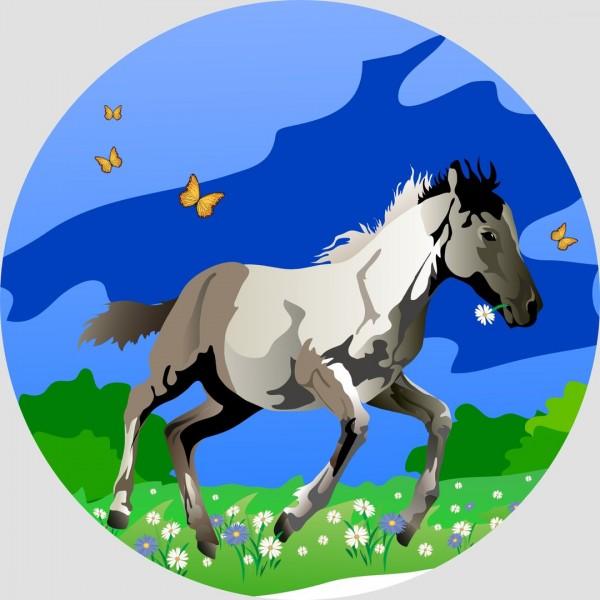 Tortenaufleger Pferd Schimmel Kindergeburtstag Pferde Torte