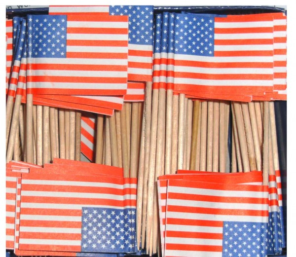 Flaggenpicker USA 50St.