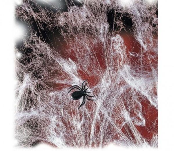 Spinnweben mit Spinne 20g