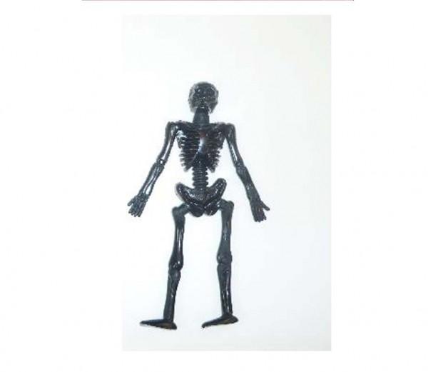 Schleim-Skelett