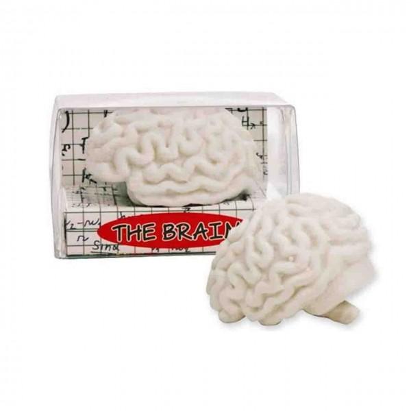 Radiergummi Gehirn