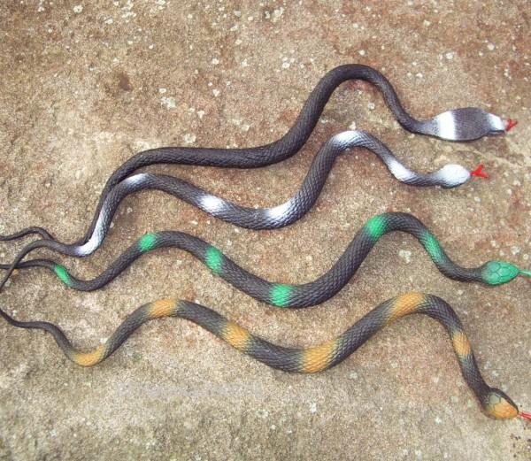 Schlängelnde Schlange