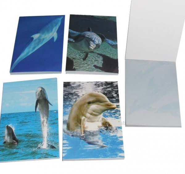 Delfin Notizbuch