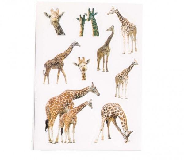 Foto-Sticker Giraffen