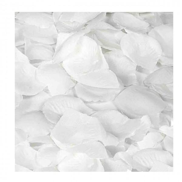 Blütenblätter weiß