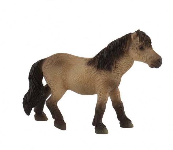 Fallabella Pony