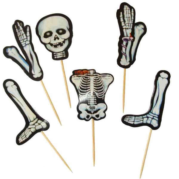 Spicker Skelett